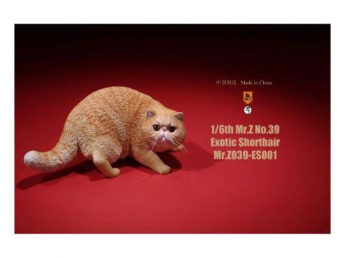 mtz10979_0_1568106719